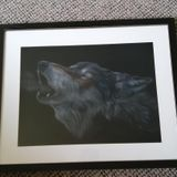 Howling Wolf - pastel on velour