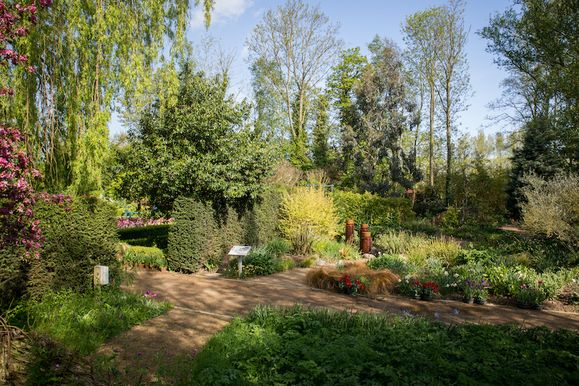 Springfields_Garden_May_201512-2